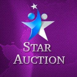 Стартап-пітч онлайн: Star Auction