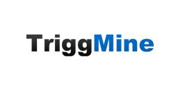 $ 300К залучив український сервіс тригер-розсилок TriggMine