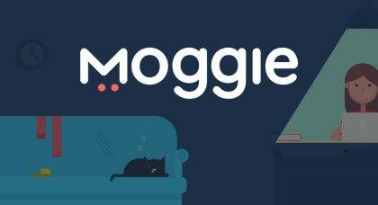 Український стартап Moggie залучив $ 70K на ошийник для котів