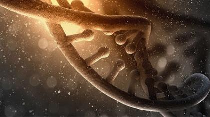 Microsoft почав співпрацю зі стартапом, який працює в області генетики