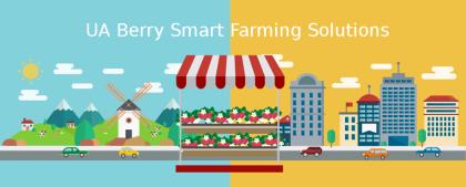 Стартап UAberry: українцям вдалось поєднати IT та вирощування полуниці