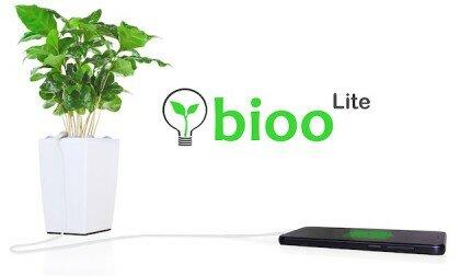 Bioо Lite: вазон, який заряджає ваш телефон